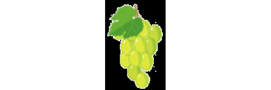 виног